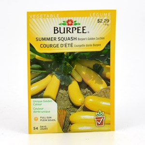 burpee_summersquash_goldenzucchini.jpg