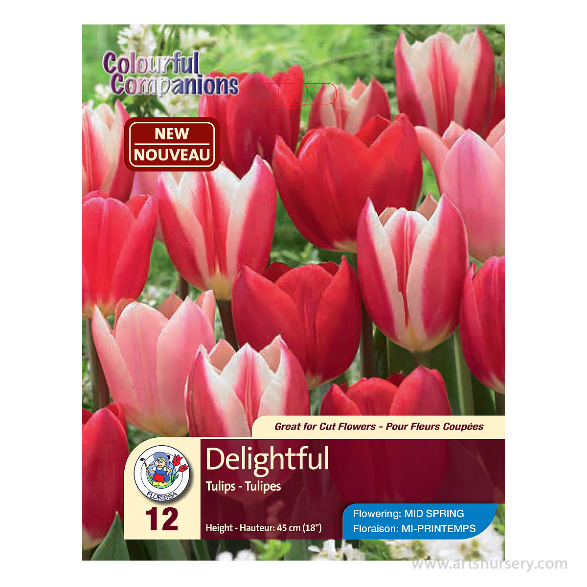 Colourful Companions Tulipa 'Delight Mix' Bulbs
