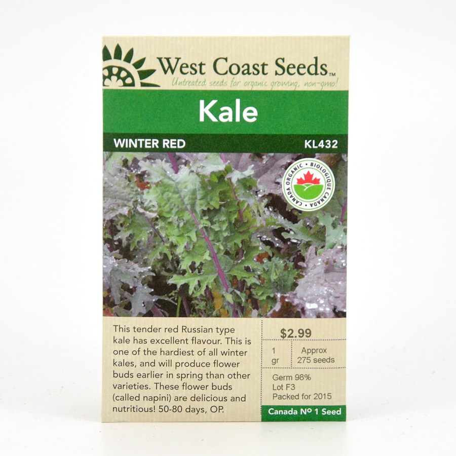 Winter Red Kale Seeds